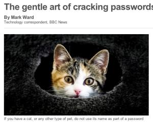 BBC Cat 2